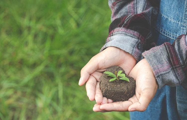 Programa Petrobras recebe até 13 de junho propostas para projetos socioambientais