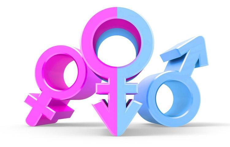 Edital sobre Igualdade de Gênero na Educação Básica recebe inscrições até 29/11