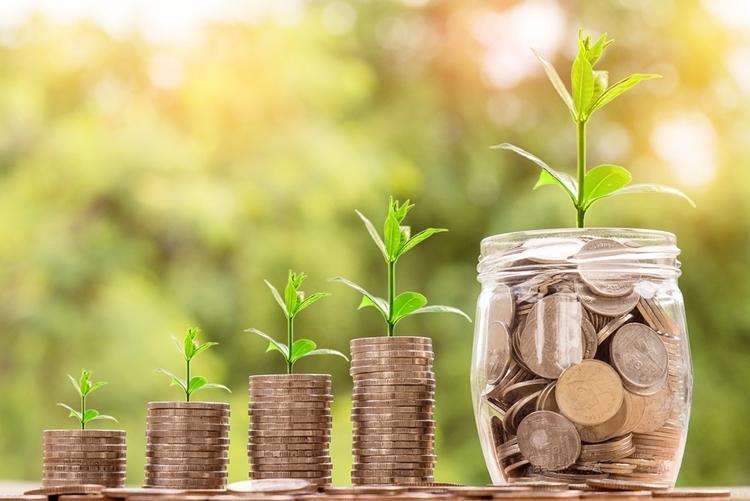 Palestra on-line e gratuita aborda regulamentação dos fundos patrimoniais